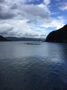 島勝浦漁港1